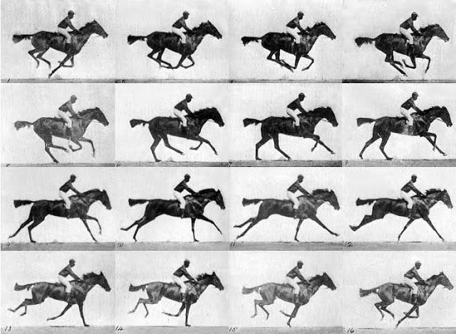 eadweard muybridge horse