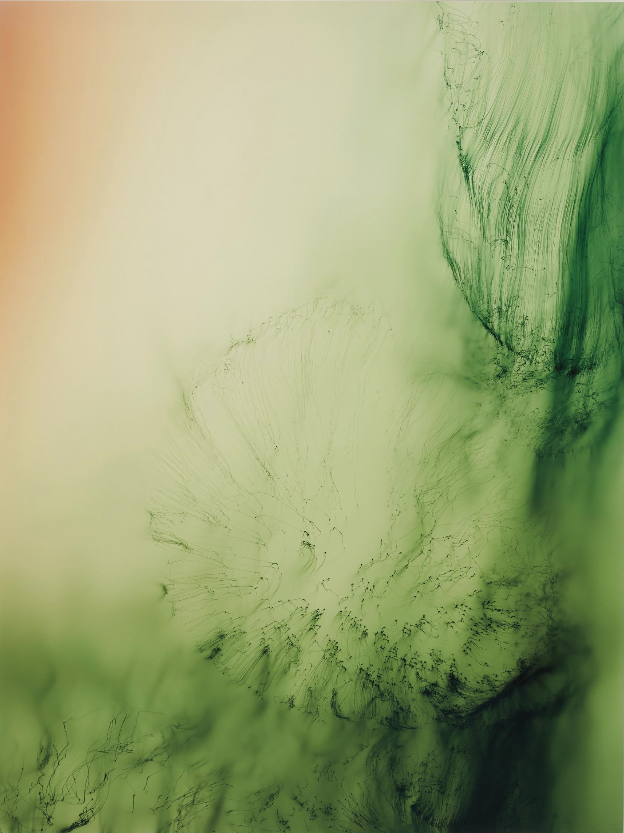Freischwimmer #84 Wolfgang Tillmans Photography Auction Record Phillips
